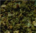 Broadbeans Curry